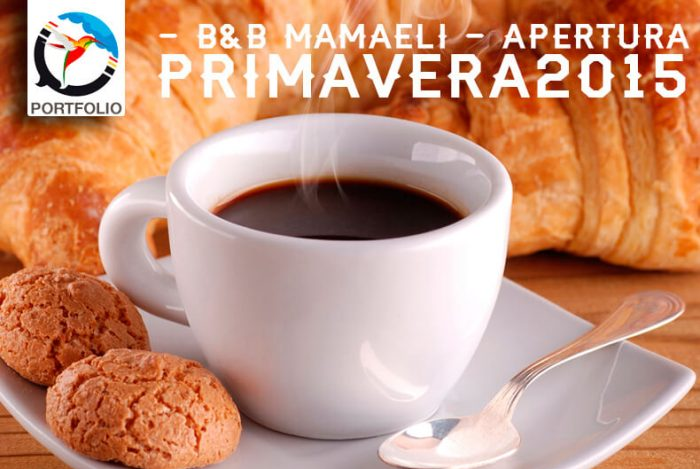 SLIDE: Grafica per Sito bed and breakfast mamaeli.it